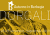 Autunno in Barbagia Dorgali 2019